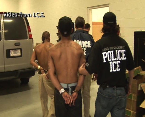 ICE Police arrests alleged gang members.
