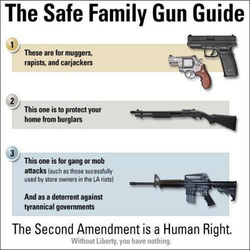 Gun enthusiasts, and Second Amendment Supporters will tend to argue that a given situation can dictate the type of firearm one might use.